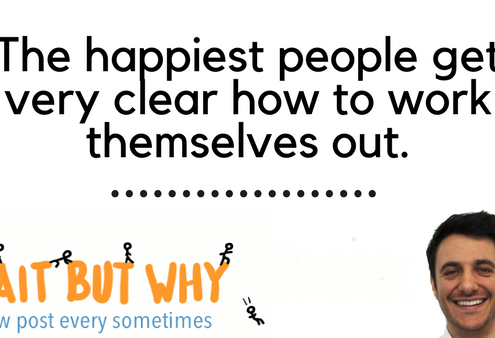 Tim Urban of Wait But Why on Happiness