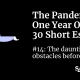 Pandemic essay: Overcoming obstacles