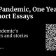 The pandemic's numbers and stories